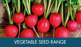 Vegetable Seed Ranges